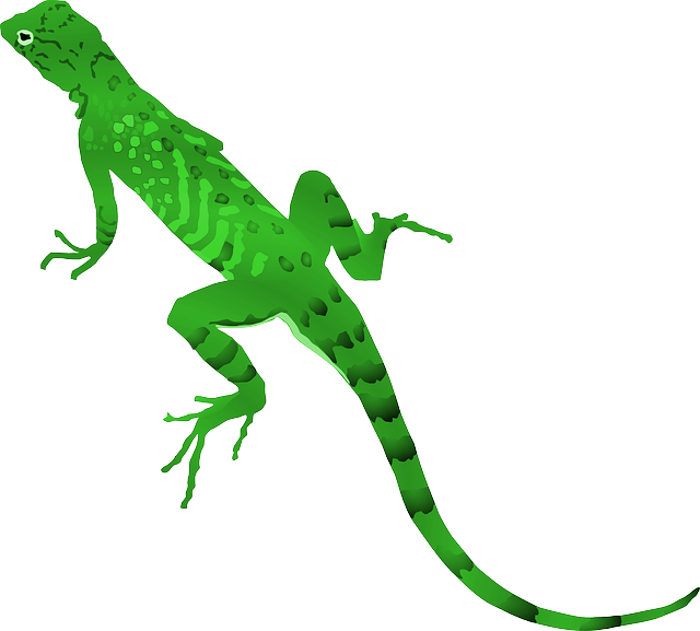 Hole clipart yellow spotted lizard, Picture #1345454 hole.