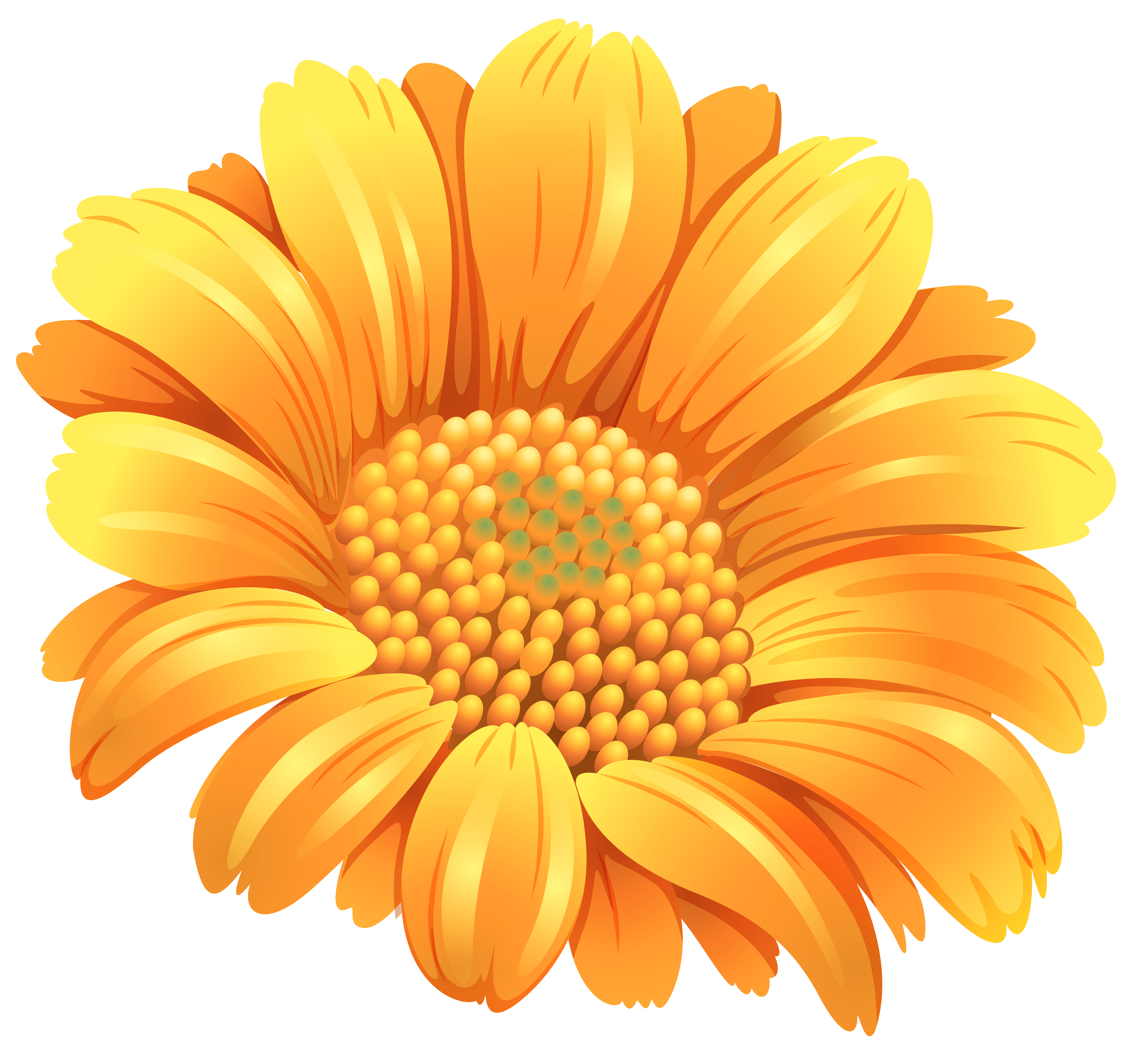 Orange Flower PNG Clipart Image.
