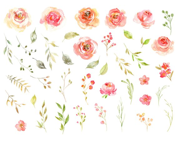 Watercolor Floral Clipart Blush Pink Yellow Flowers.