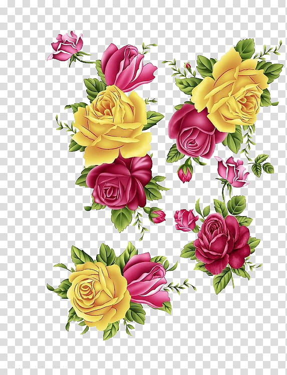 Yellow and pink flowers illustration transparent background.