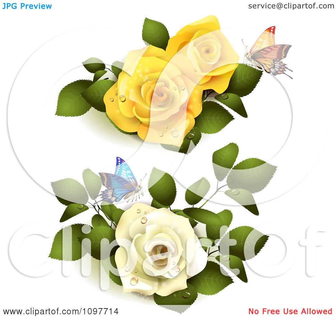Clipart Yellow And White Roses With Butterflies And Leaves.
