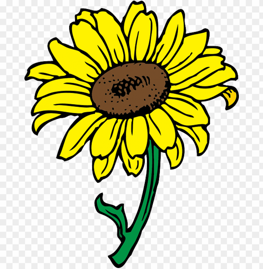 black, outline, yellow, drawing, sun, flower, white.