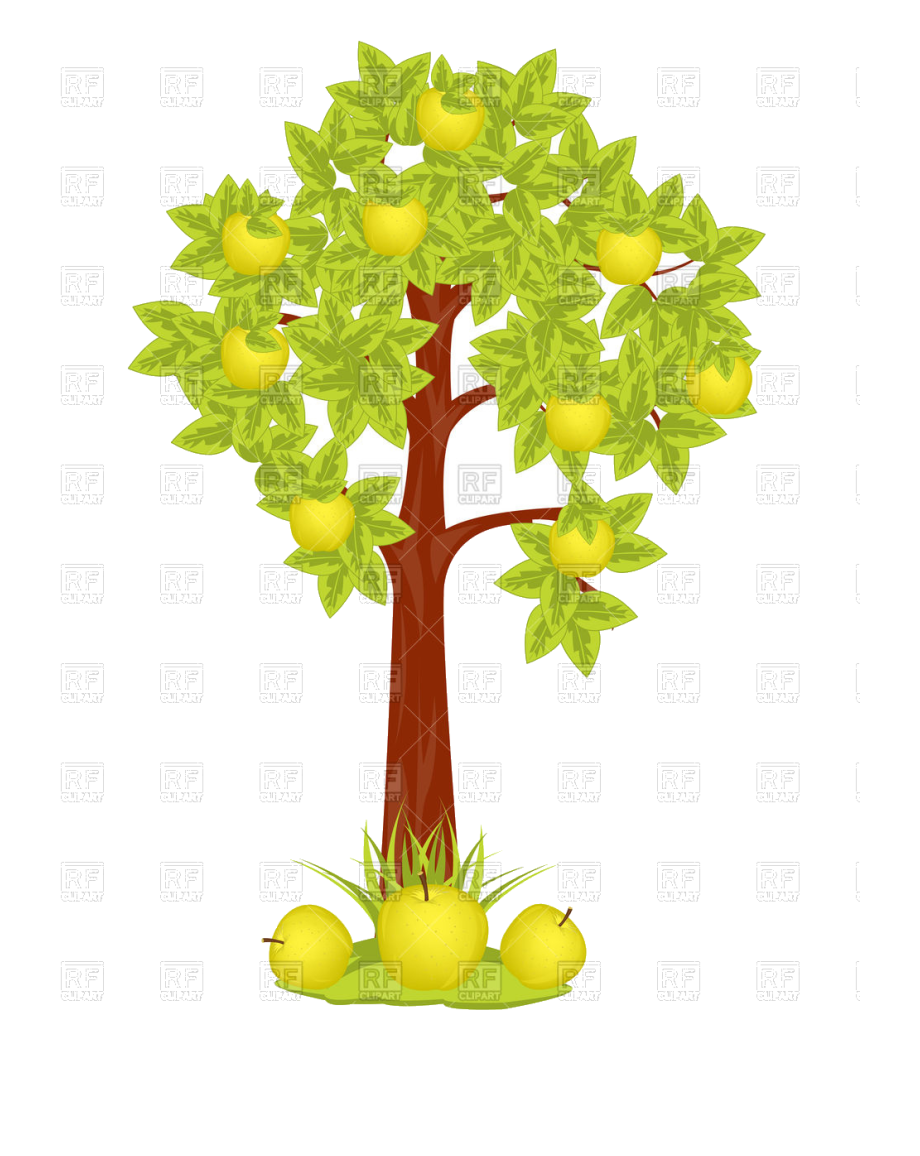 Apple Tree Vector Image Illustration Of Plants And.
