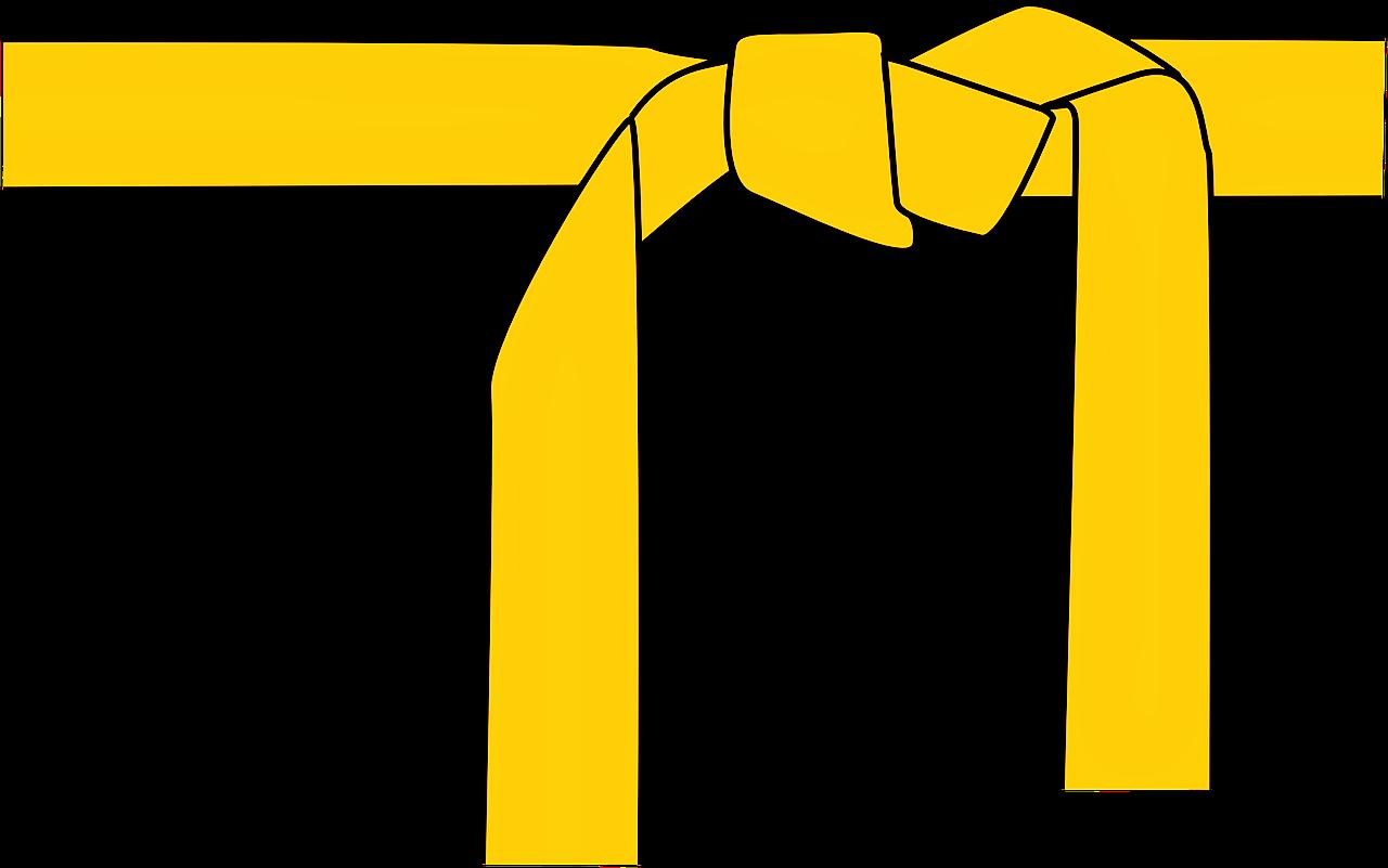 Lean Yellow Belt.