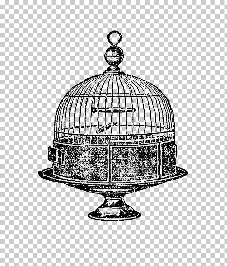 Birdcage Domestic canary Drawing, birdcage PNG clipart.