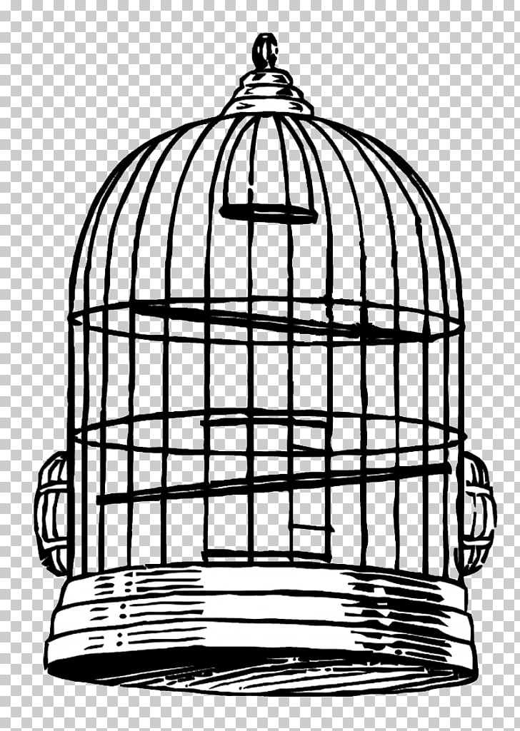Birdcage Drawing , Bird PNG clipart.