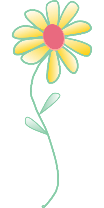 Free vector graphic: Flower, Yellow, Blossom, Plant.