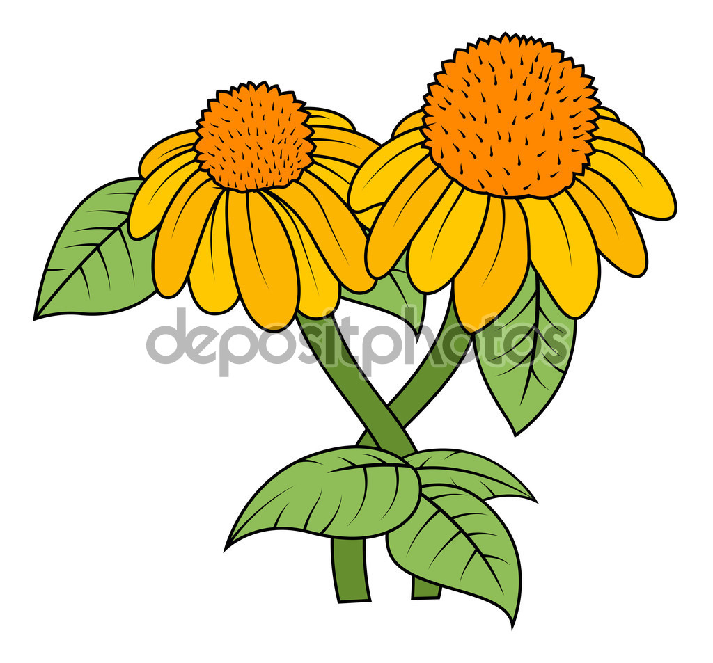 Yellow Blossom Vector Branches — Stock Vector © baavli #64336861.