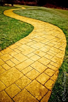 Follow YOUR yellow brick road (Tia) iPhone 6 wallpaper.