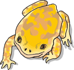 Yellow And Brown Frog Clip Art at Clker.com.