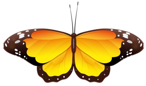 yellow butterfly clip art.