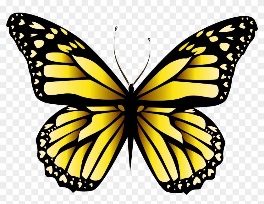 Yellow Butterfly Png Clipar Image Yellow Butterfly.