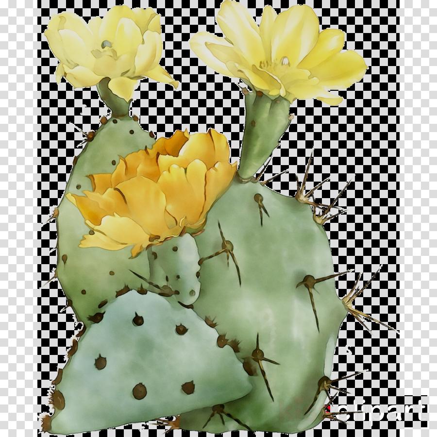 Cactus Cartoon clipart.