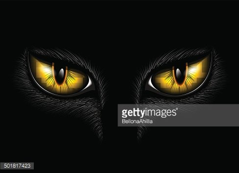 yellow cat\'s eyes Clipart Image.