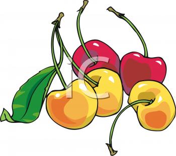 Red and Yellow Cherries.