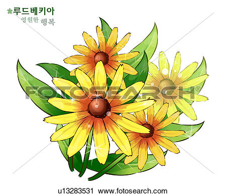 Clipart of flowers, nature, plants, coneflower, plant, bloom.