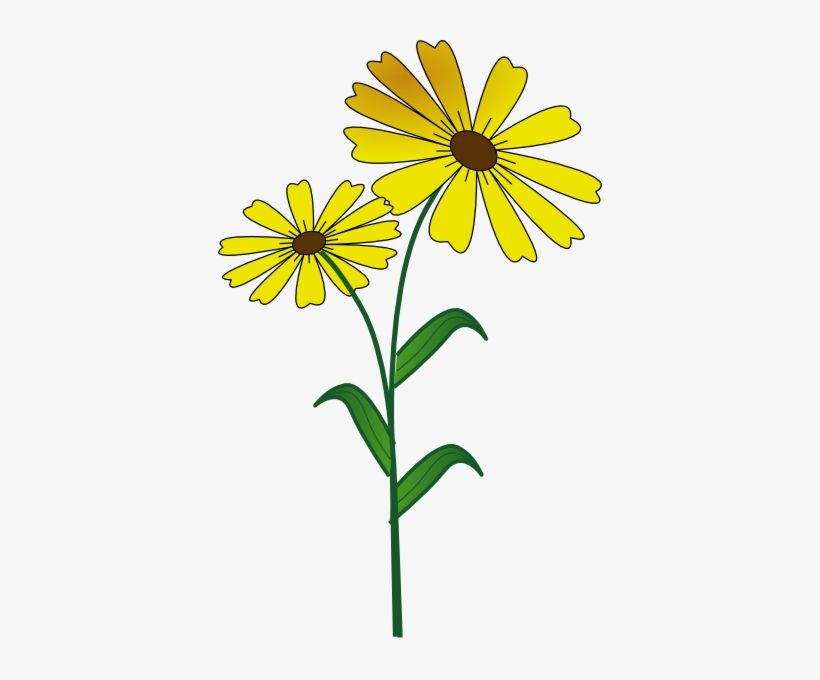 Daisy Flower Clip Art Free Vector For About Clipartix.