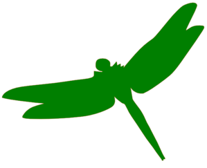 Dragonfly Clipart Free Download.