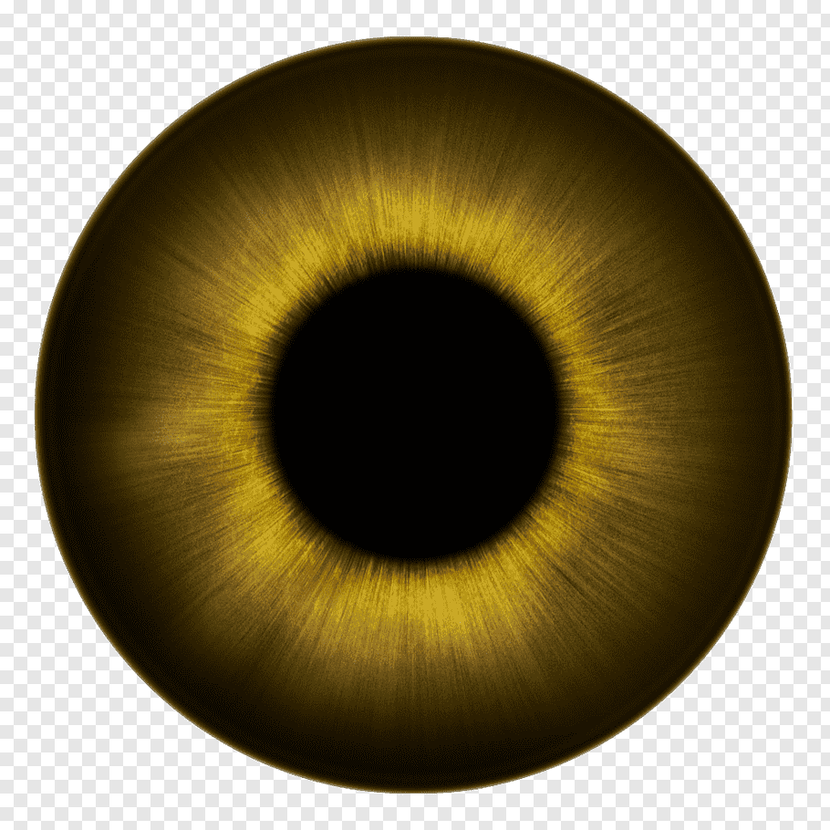 Eyeball, Human eye Iris Texture Eye color, eyes free png.