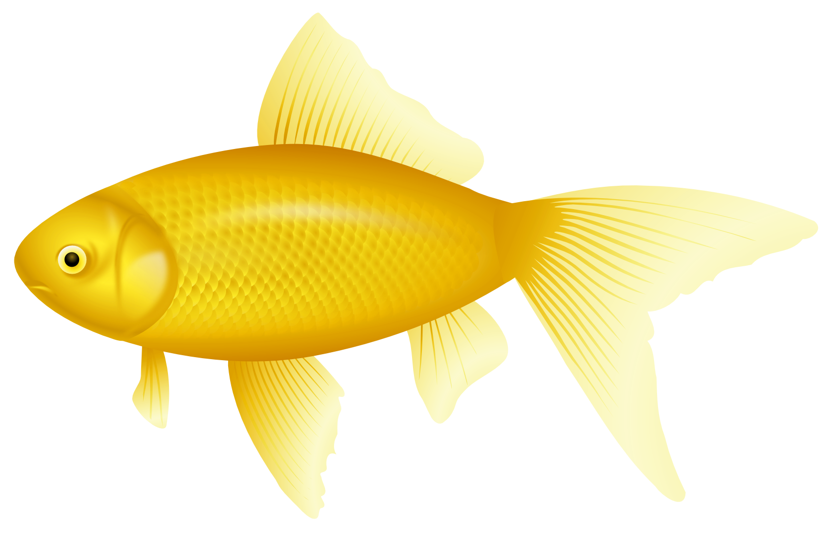 Yellow Fish PNG Clipart.