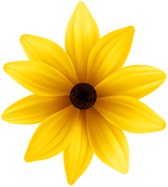 Flower Yellow Blue Clip art.