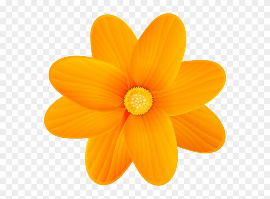 Orange Flower Png Clip Art Image.