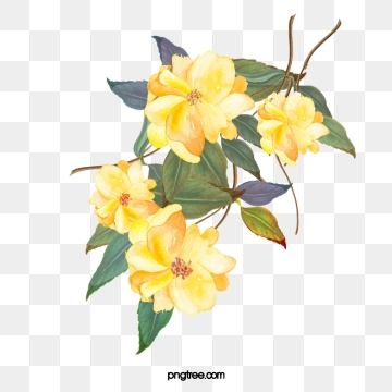 Yellow Flowers Png, Vector, PSD, and Clipart With Transparent.