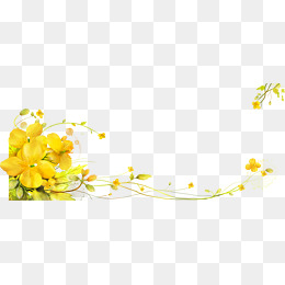 Yellow Flower PNG Images.