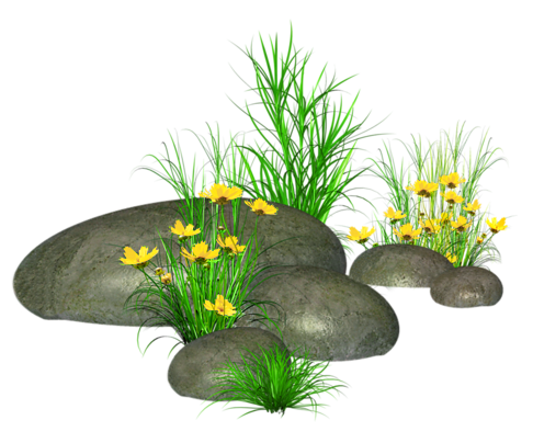 Stones with Grass and Yellow Flowers PNG Picture.