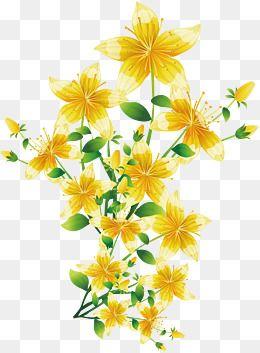 2019 的 Yellow Flowers, Spring Background, Spring Illustration PNG.