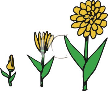 446 Yellow Flower free clipart.