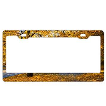 Amazon.com: Aumtun Gold Tree Road License Plate Frame Funny.