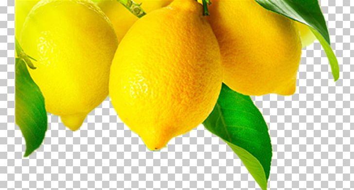 Grapefruit Juice Meyer Lemon Fruit Tree PNG, Clipart, Citric.