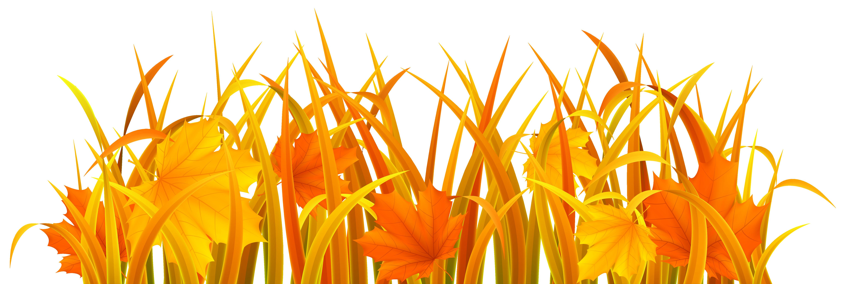 Autumn Grass PNG Clipart Image.