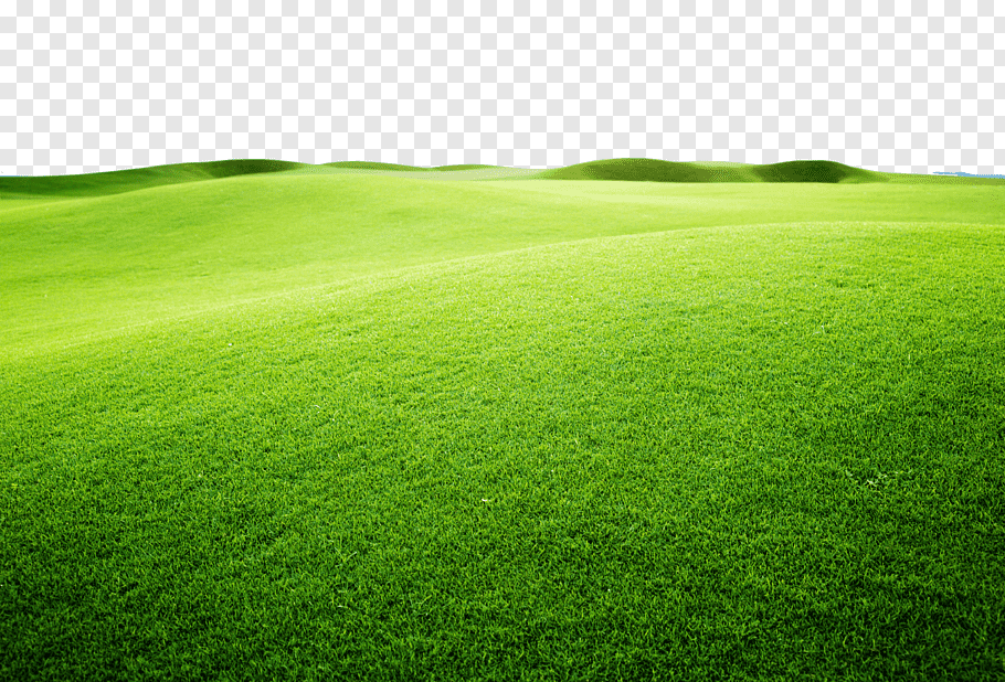 Green grass field graphy, Artificial turf Sports venue Green.
