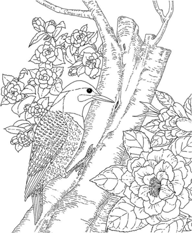 Yellowhammer and Camellia Alabama State Bird and Flower.