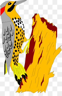 Yellowhammer PNG.
