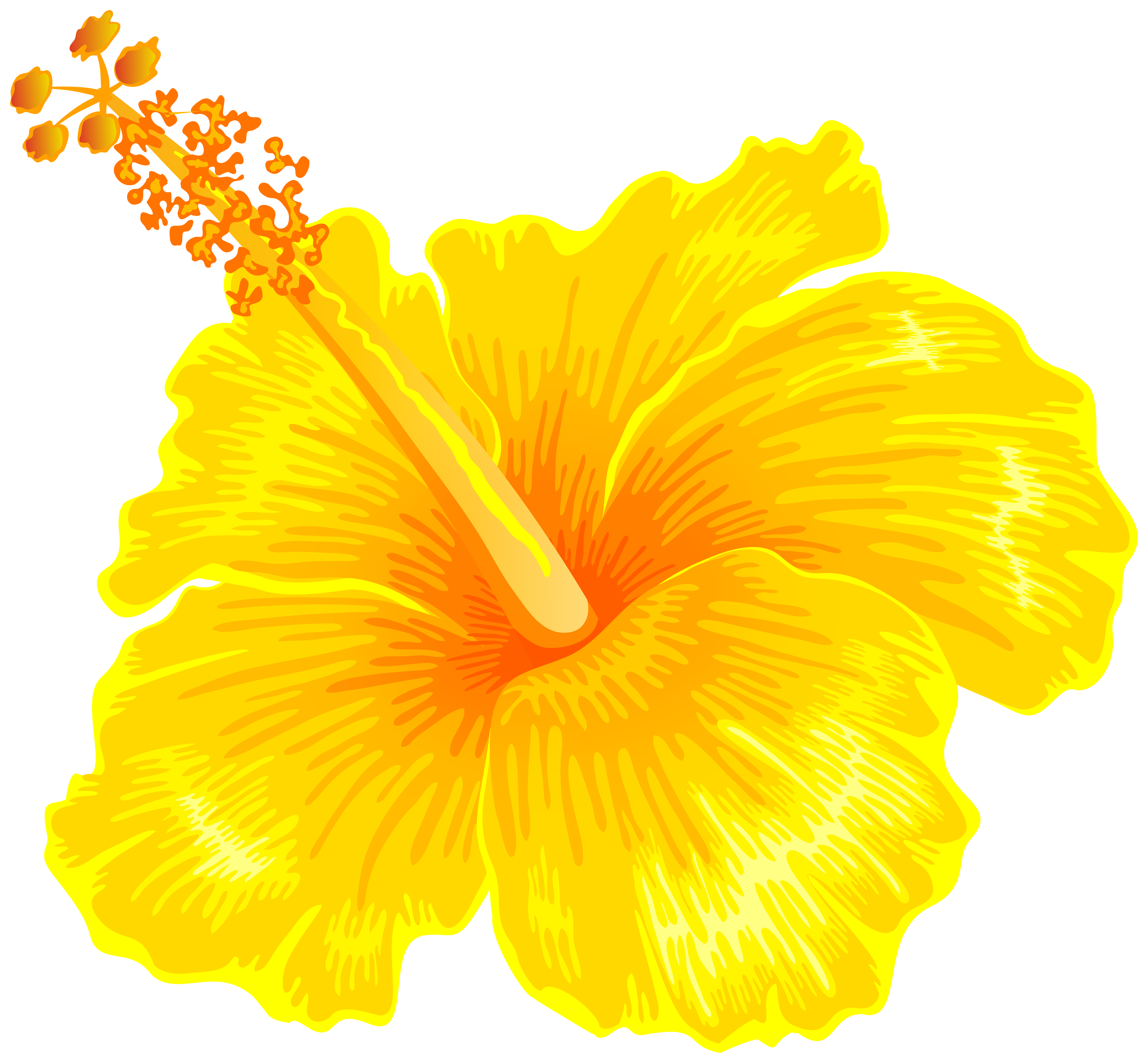 Yellow Hibiscus Flower PNG Clipart.