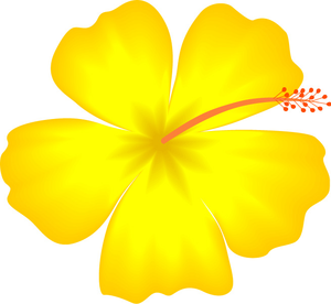 Yellow Hibiscus Hawaii State Flower clip art.