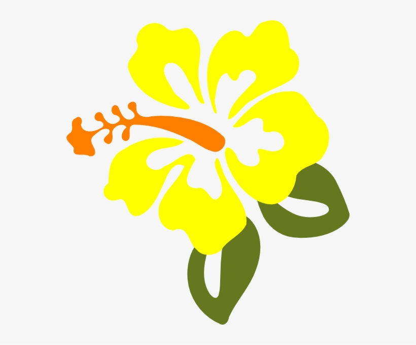 Hibiscus Flowers Clipart At Getdrawings.