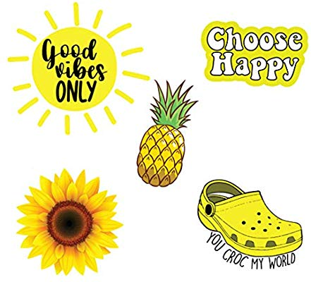 Pack of 5 Cute hydroflask Stickers for Teens, Yellow.