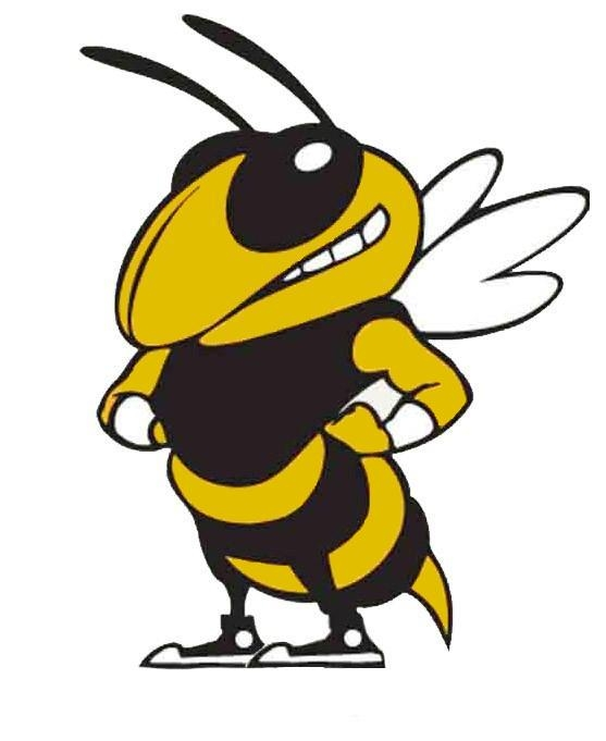 Yellow Jacket Clipart Gt.