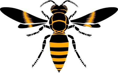 153 Yellow Jacket Bee Stock Illustrations, Cliparts And Royalty Free.