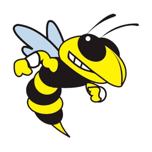 12 Yellow Jackets Temporary Tattoos, School Mascot Face.