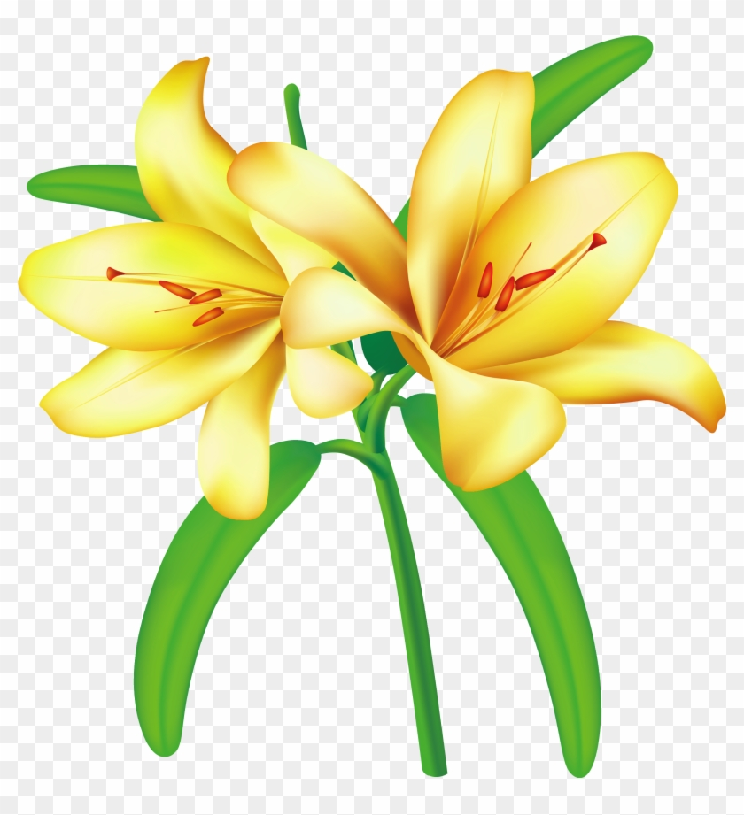 Yellow Flowers, Art Flowers, Flower Art, Flower Clipart.