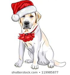 585 Best YELLOW LAB Clipart images in 2019.