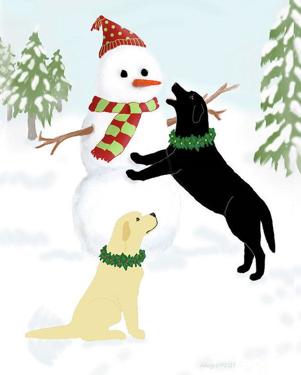 Pin by Jennifer Holmes on YELLOW LAB Clipart.