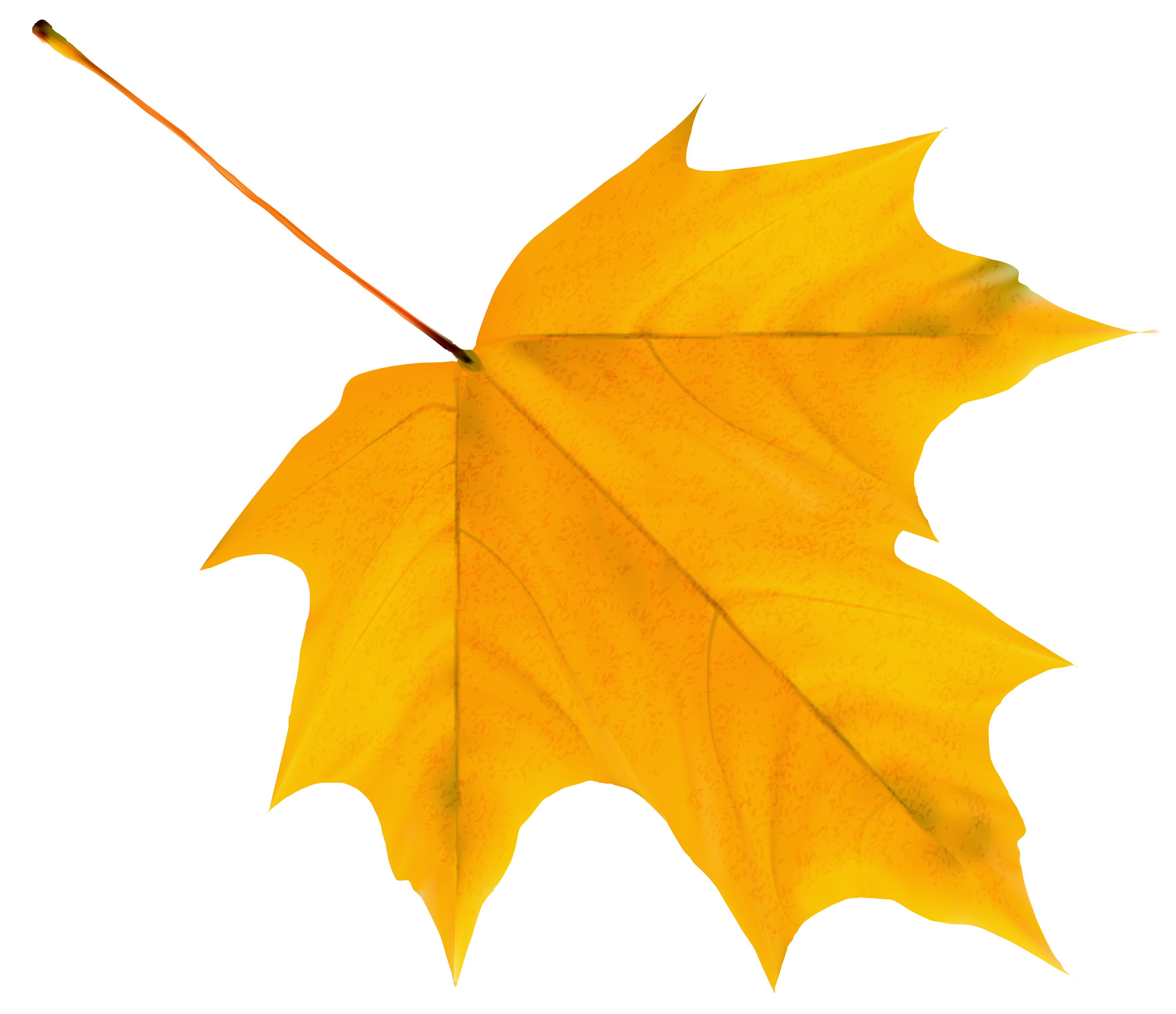 Yellow leaf clipart - Clipground