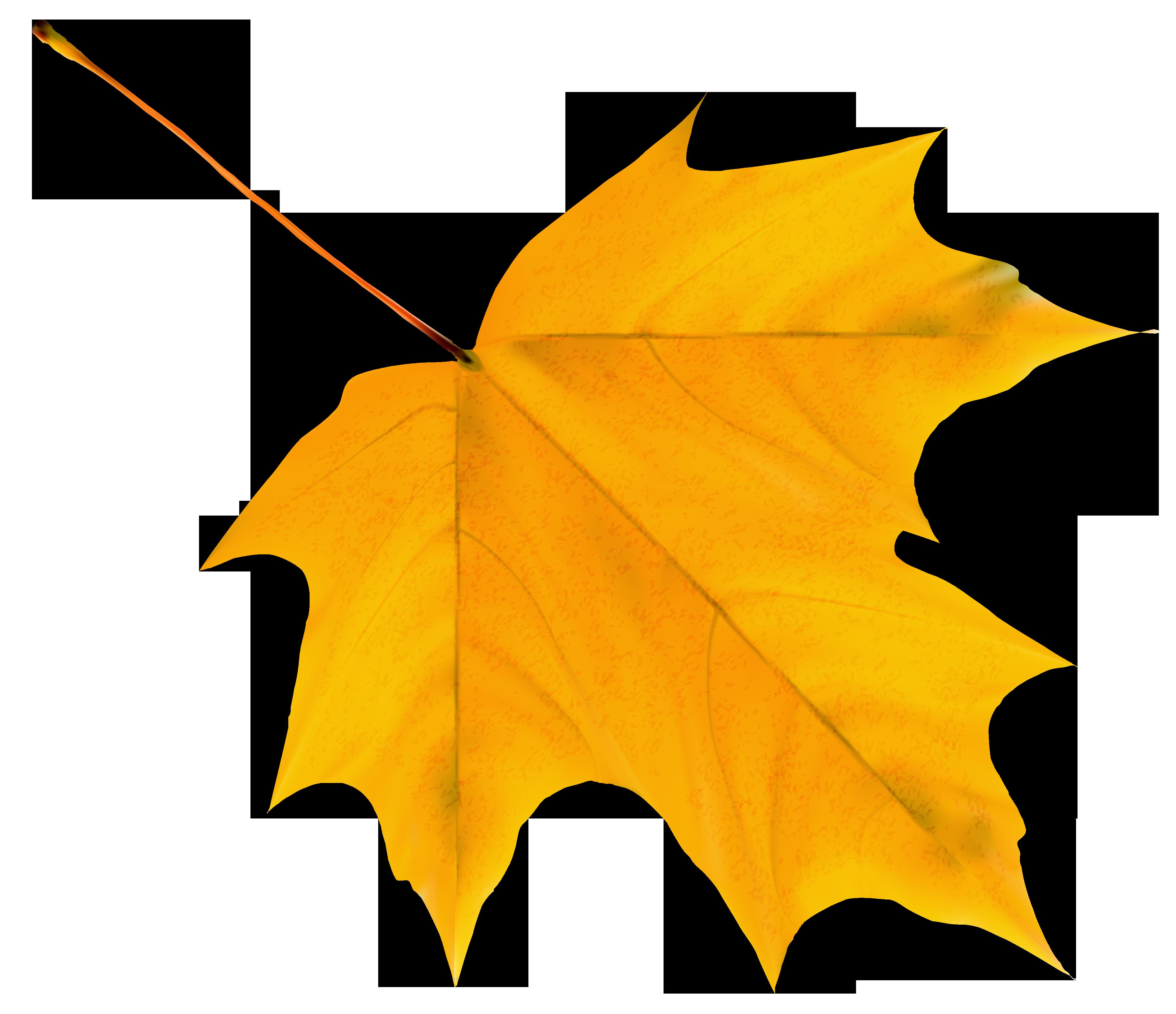 Yellow Autumn Leaves Clip Art.