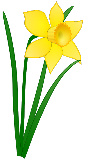 Easter lily flower clipart.
